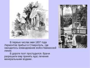 В первых числах мая 1837 года Лермонтов прибыл в Ставрополь, где находилось