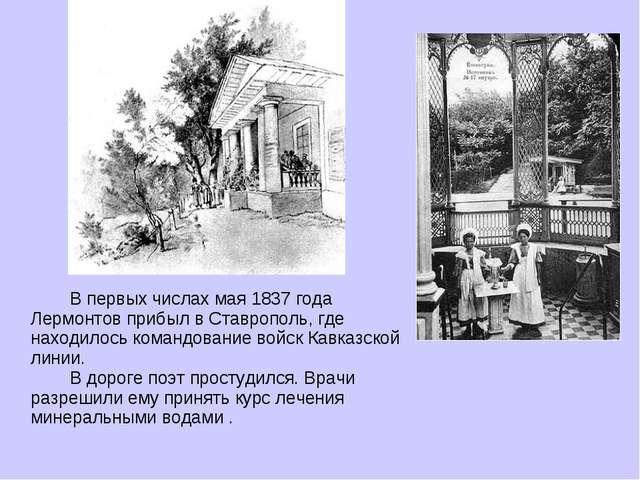 В первых числах мая 1837 года Лермонтов прибыл в Ставрополь, где находилось...