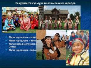 Разрушается культура малочисленных народов Малая народность -теленгиты Малая