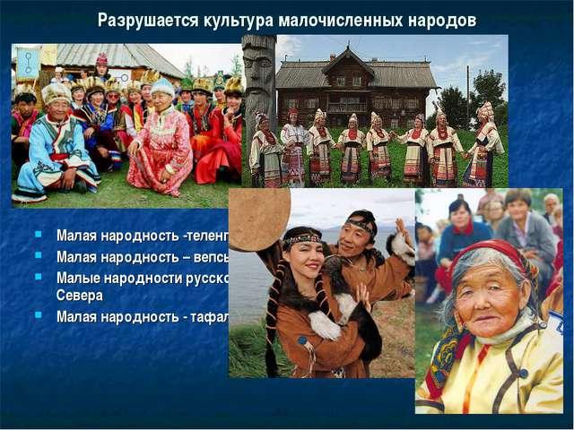 Разрушается культура малочисленных народов Малая народность -теленгиты Малая...