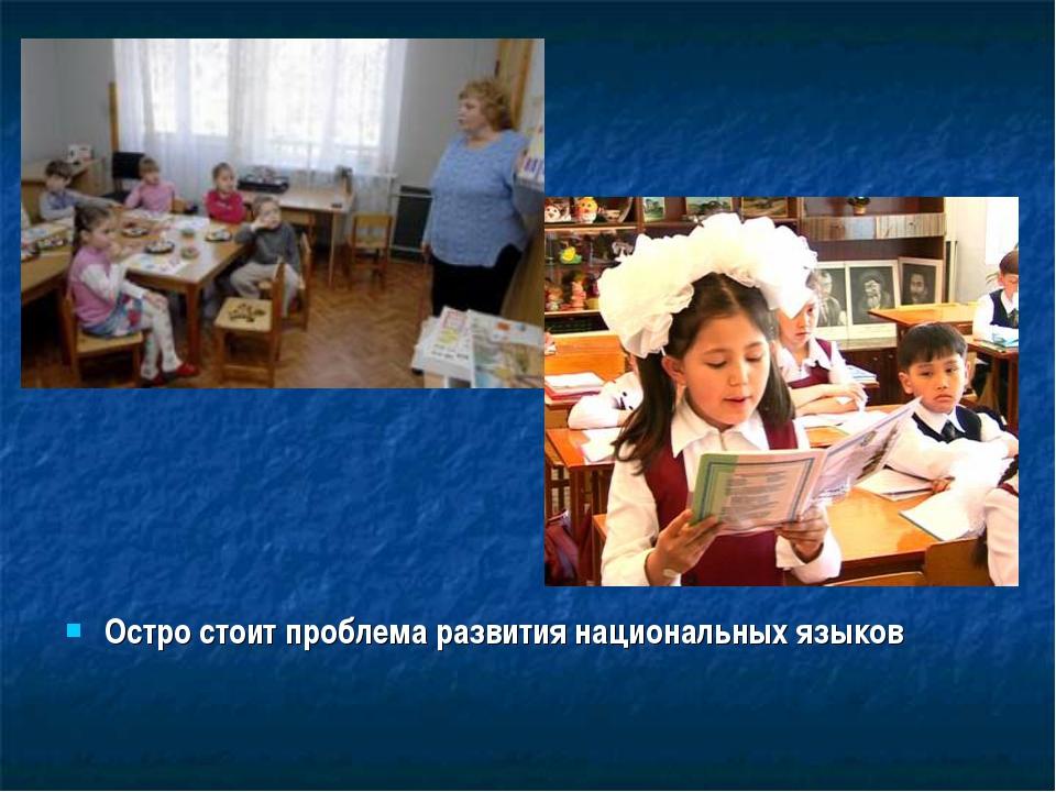 Остро стоит проблема развития национальных языков