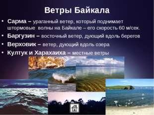 Ветры Байкала Сарма – ураганный ветер, который поднимает штормовые волны на Б