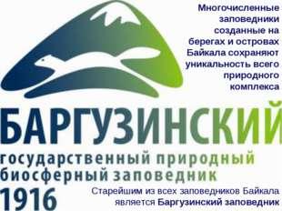 Многочисленные заповедники созданные на берегах и островах Байкала сохраняют