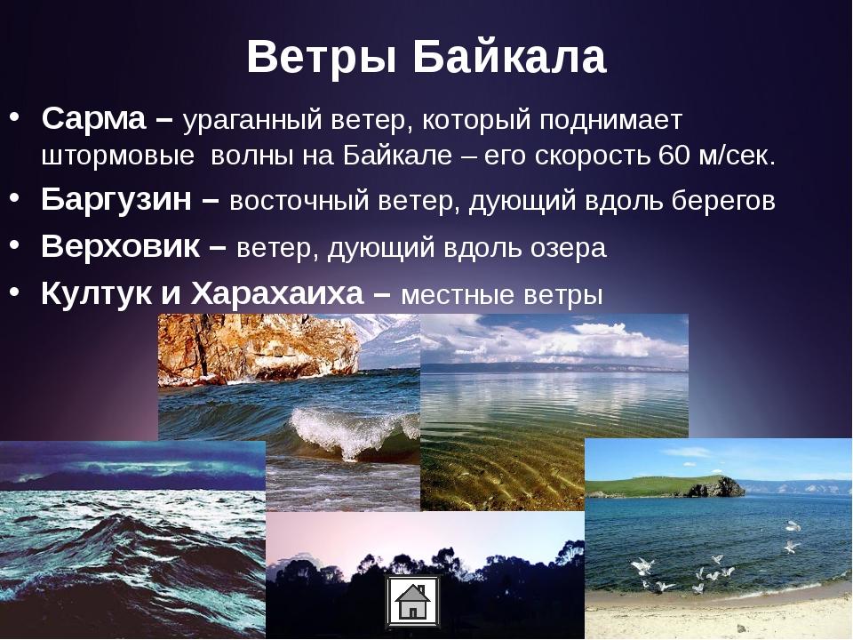 Ветры Байкала Сарма – ураганный ветер, который поднимает штормовые волны на Б...