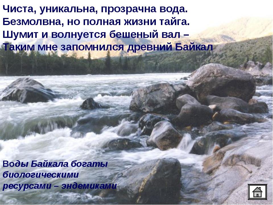 Чиста, уникальна, прозрачна вода. Безмолвна, но полная жизни тайга. Шумит и в...