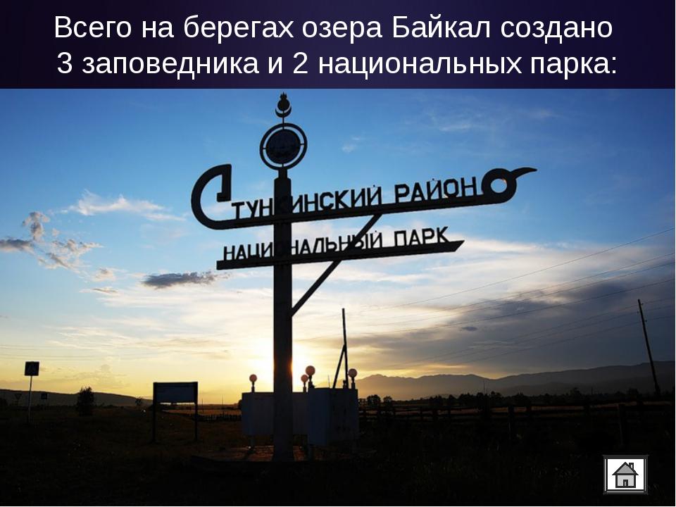 Всего на берегах озера Байкал создано 3 заповедника и 2 национальных парка: