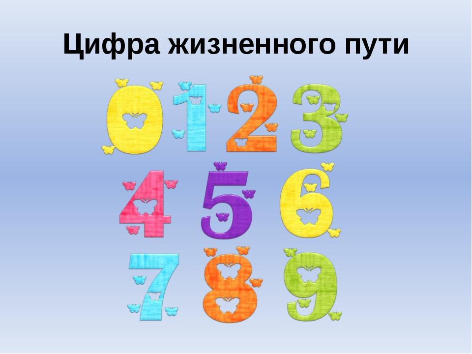 Цифра жизненного пути