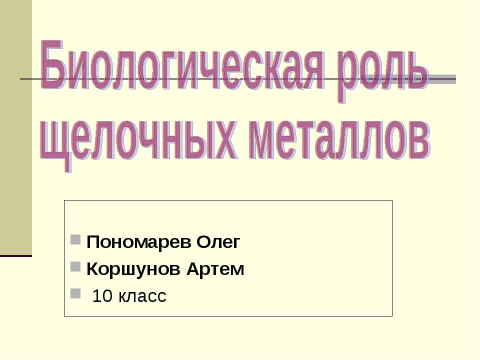 Пономарев Олег Коршунов Артем 10 класс