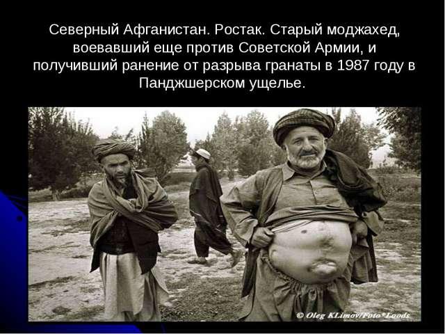 Северный Афганистан. Ростак. Старый моджахед, воевавший еще против Советской...