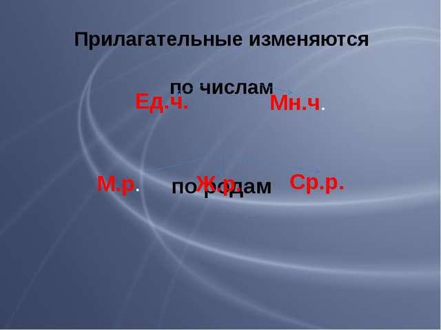 Прилагательные изменяются по числам по родам Ед.ч. Мн.ч. М.р. Ж.р. Ср.р.