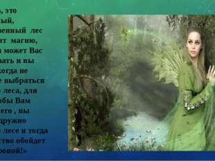 «Ребята, это сказочный, таинственный лес и он таит магию, которая может Вас о