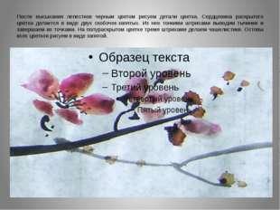 После высыхания лепестков черным цветом рисуем детали цветка. Сердцевина раск