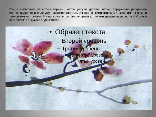 После высыхания лепестков черным цветом рисуем детали цветка. Сердцевина раск...