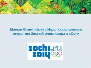 Малые Олимпийские Игры, посвященные открытию Зимней олимпиады в г.Сочи Дороги