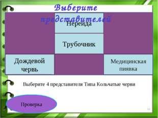 Проверка Выберите 4 представителя Типа Кольчатые черви Белая планария Нереида