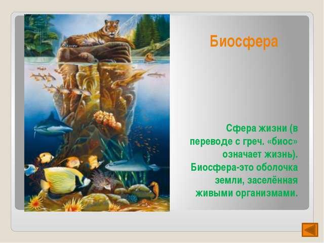 """Презентация подготовлена на конкурс ""Радуга презентаций"" для международного..."