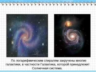 По логарифмическим спиралям закручены многие галактики, в частности Галактик