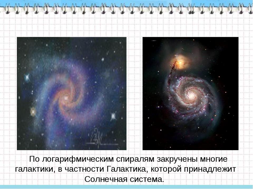По логарифмическим спиралям закручены многие галактики, в частности Галактик...