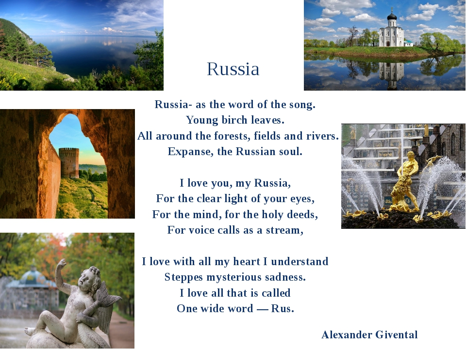 Russia Russia- as the word of the song. Young birch leaves. All around the fo...