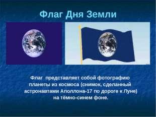 Флаг представляет собой фотографию планеты из космоса (снимок, сделанный астр