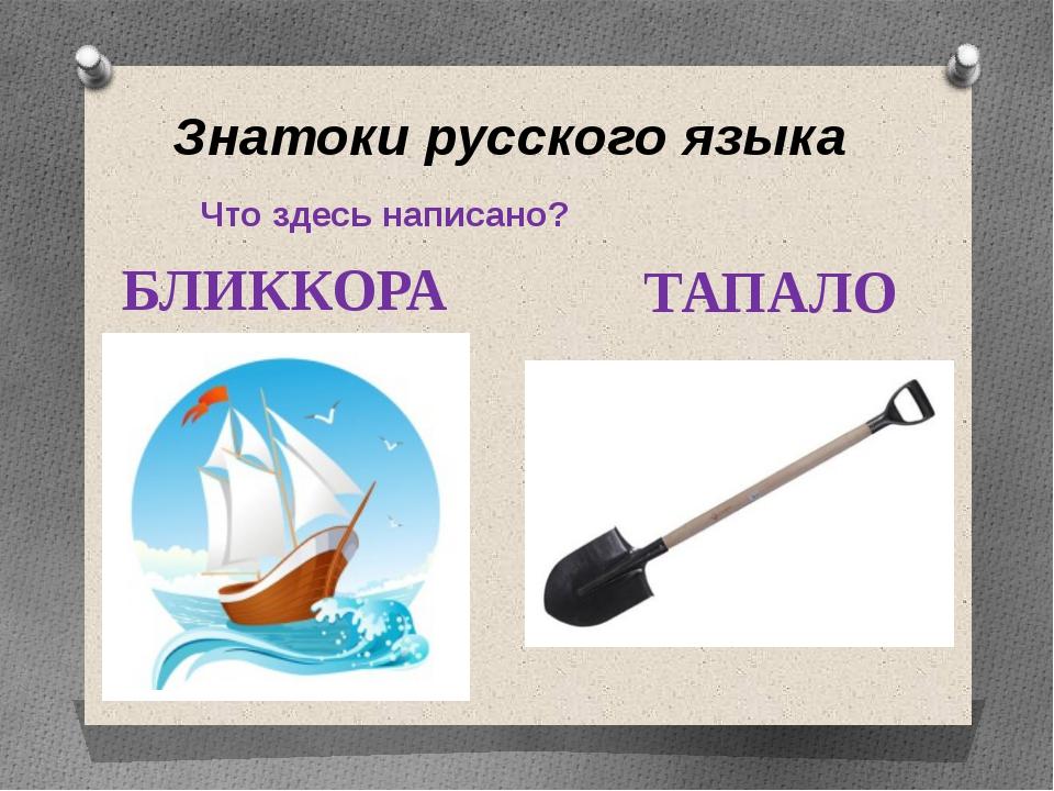 Знатоки русского языка Что здесь написано? БЛИККОРА ТАПАЛО