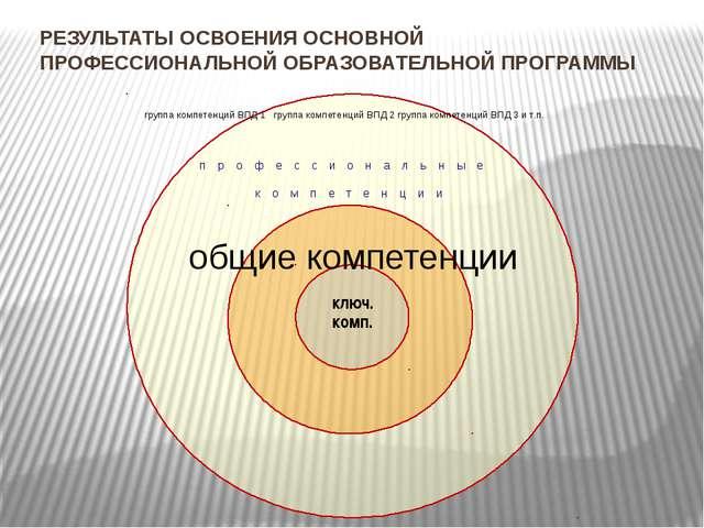 РЕЗУЛЬТАТЫ ОСВОЕНИЯ ОСНОВНОЙ ПРОФЕССИОНАЛЬНОЙ ОБРАЗОВАТЕЛЬНОЙ ПРОГРАММЫ профе...