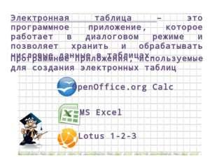 Электронная таблица – это программное приложение, которое работает в диалогов