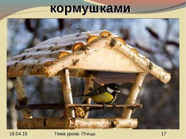 Знакомство с кормушками Тема урока: Птицы