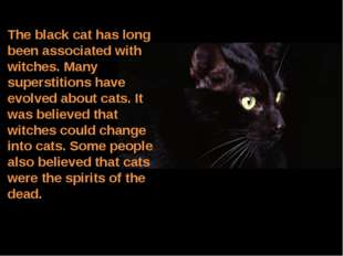 The black cat has long been associated with witches. Many superstitions have