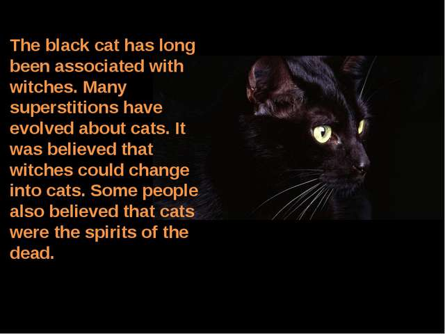 The black cat has long been associated with witches. Many superstitions have...