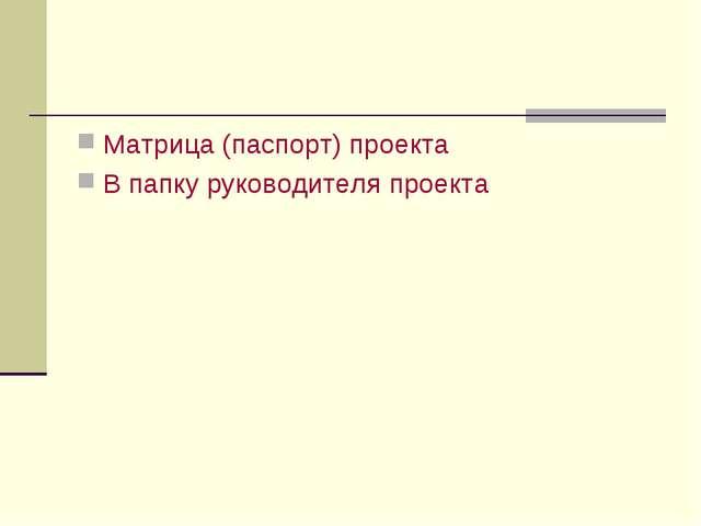 Матрица (паспорт) проекта В папку руководителя проекта