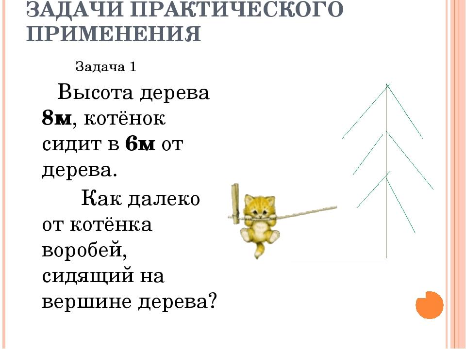 ЗАДАЧИ ПРАКТИЧЕСКОГО ПРИМЕНЕНИЯ Задача 1 Высота дерева 8м, котёнок сидит в 6м...
