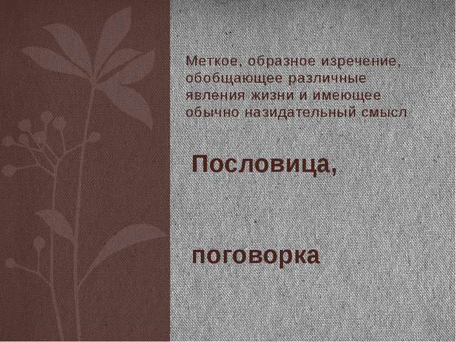 Меткое, образное изречение, обобщающее различные явления жизни и имеющее обыч...