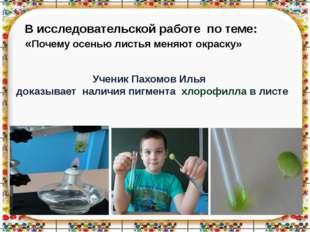 Ученик Пахомов Илья доказывает наличия пигмента хлорофилла в листе В исследов