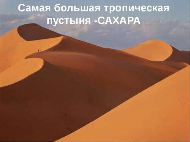 Самая большая тропическая пустыня -САХАРА