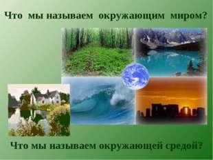 Что мы называем окружающим миром? Что мы называем окружающей средой?