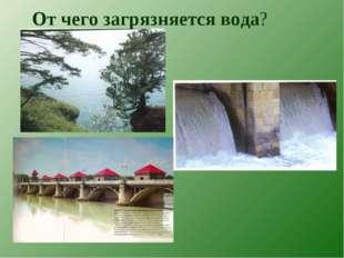 От чего загрязняется вода?
