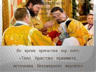 Во время причастия хор поёт: «Тело Христово приимите, источника безсмерного в