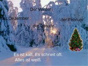 Der Winter der Januar der Februar der Dezember Es ist kalt. Es schneit oft. A