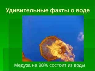 Удивительные факты о воде Медуза на 98% состоит из воды
