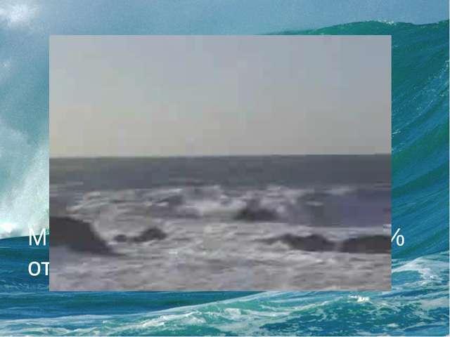 Мировой океан составляет 70 % от всей поверхности Земли