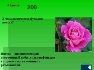 В чем заключается функция цветка? Цветок – видоизмененный укороченный побег,
