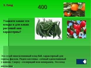 Укажите какие это плоды и для каких растений они характерны? Это сухой многос