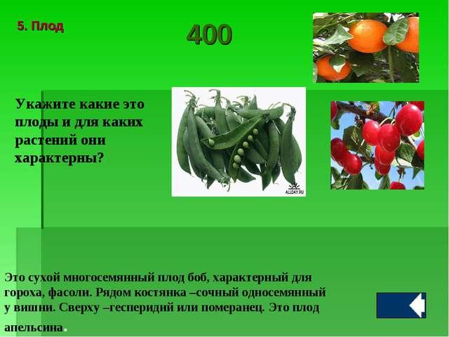 Укажите какие это плоды и для каких растений они характерны? Это сухой многос...