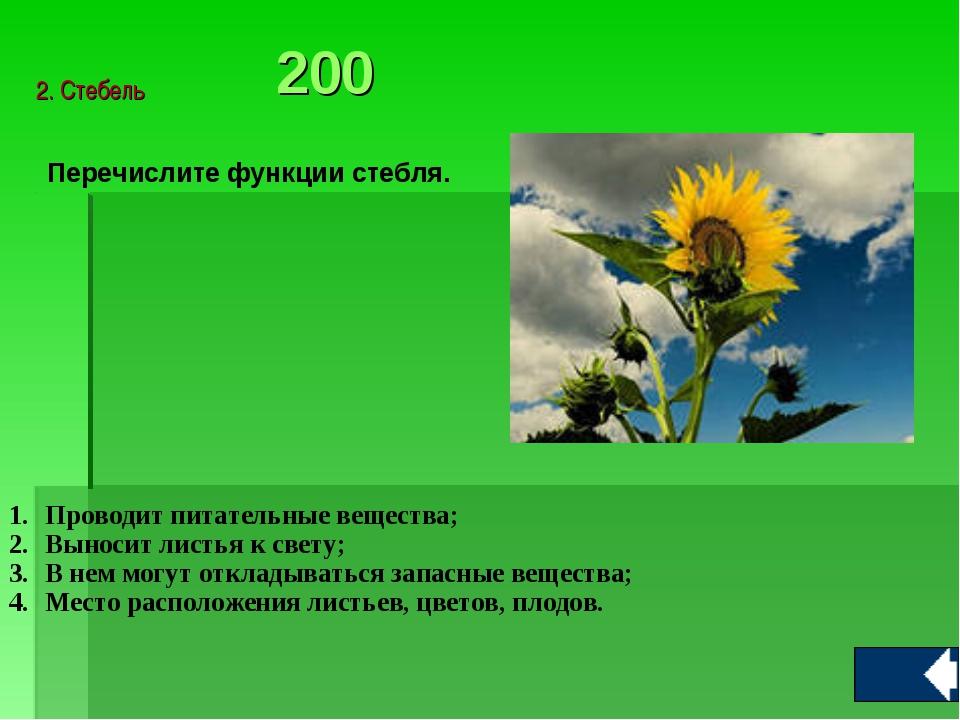 Перечислите функции стебля. Проводит питательные вещества; Выносит листья к...