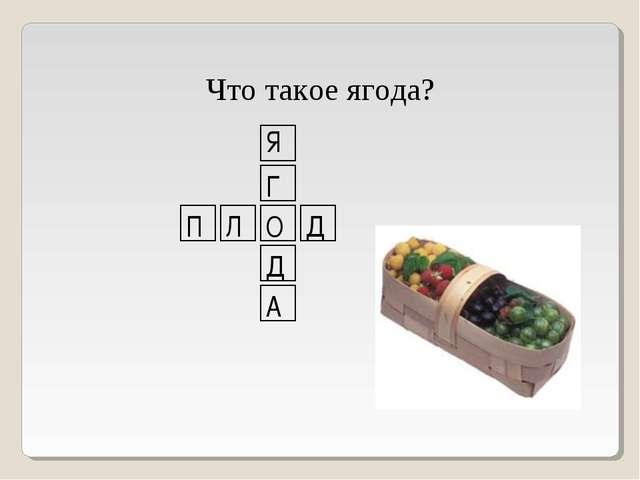Что такое ягода? П Л О Д Я Г Д А