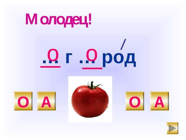 … г … род О А О А о Молодец! о