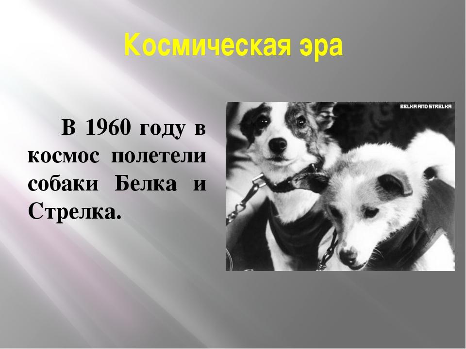 Космическая эра В 1960 году в космос полетели собаки Белка и Стрелка.