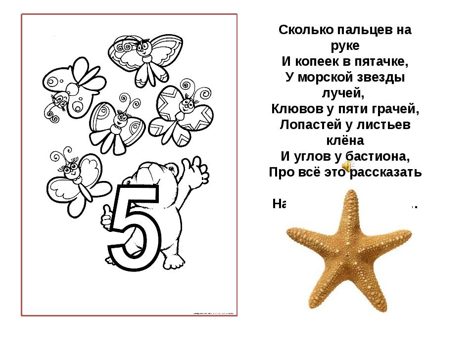 Сколько пальцев на руке И копеек в пятачке, У морской звезды лучей, Клювов у...
