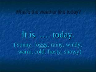 What's the weather like today? It is … today. ( sunny, foggy, rainy, windy, w